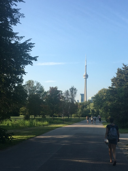 Walking back towards the dock with CN Tower in the background.